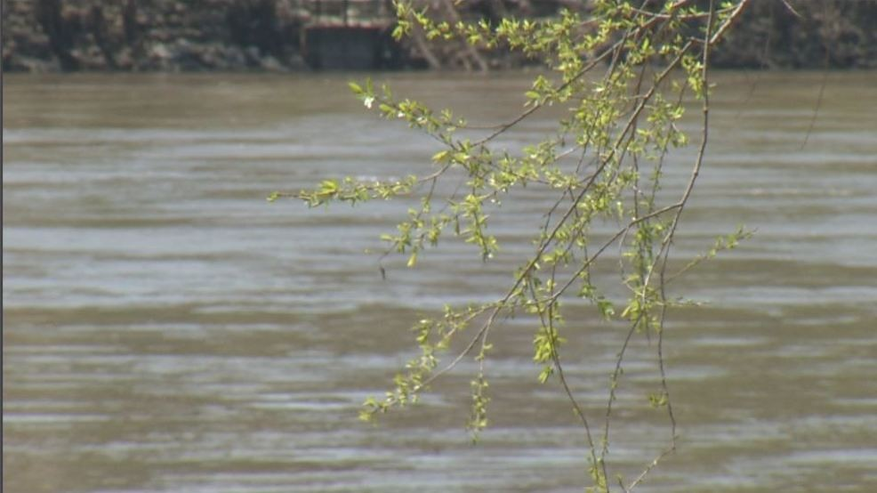 Levees breached, St  Louis floodgates closed before crest | KRCG